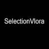 SelectionVlora
